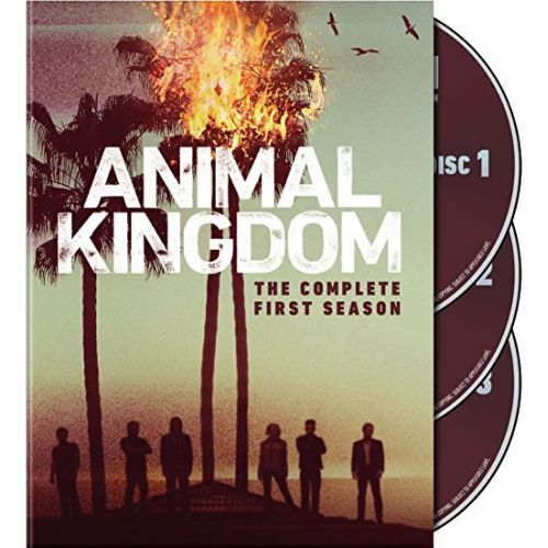 DVD sales uk animal kingdom season 1