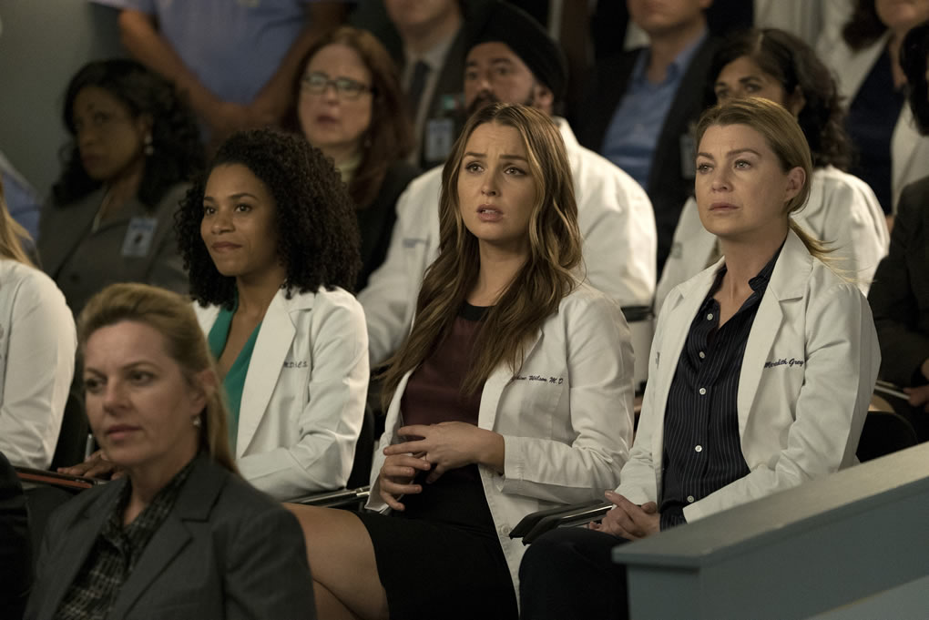 health-care-in-the-time-of-greys-anatomy-season-15-b