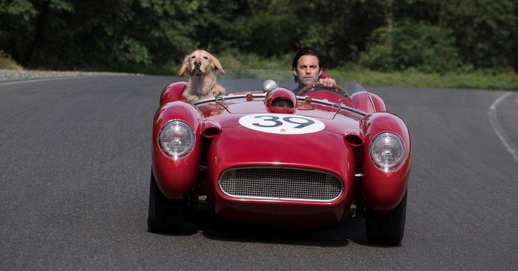 Art of Racing in the Rain Trailer: Kevin Costner is a Dog Who Loves Racing